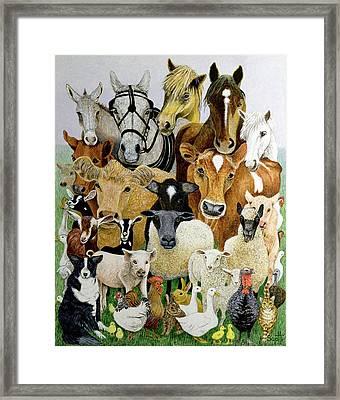 Animal Allsorts Oil On Canvas Framed Print by Pat Scott