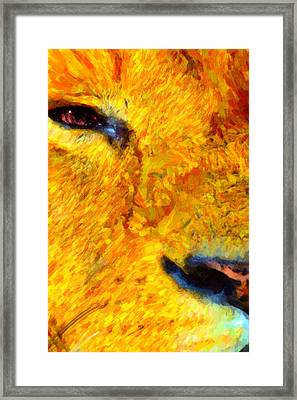 Animal Eye Lion Framed Print by Tommytechno Sweden