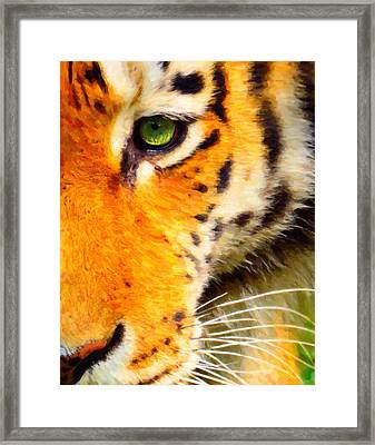 Animal Eye Tiger Framed Print by Tommytechno Sweden