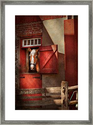 Animal - Horse - Calvins House  Framed Print by Mike Savad