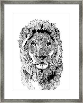 Animal Prints - Proud Lion - By Sharon Cummings Framed Print