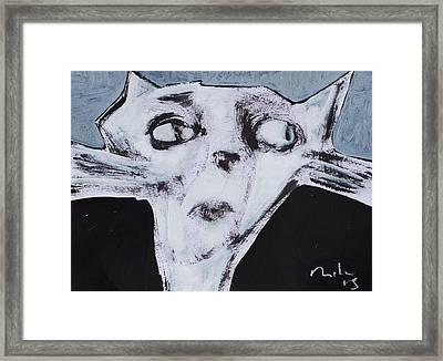 Animalia Feles No. 9  Framed Print by Mark M  Mellon