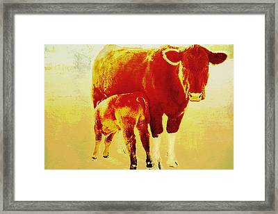 Animals Cow And Calf Framed Print by Ann Powell