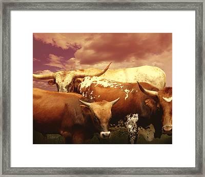 animals - cows- Longhorns La Familia  Framed Print by Ann Powell