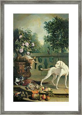 Animals, Flowers And Fruits Oil On Canvas Framed Print by Alexandre-Francois Desportes