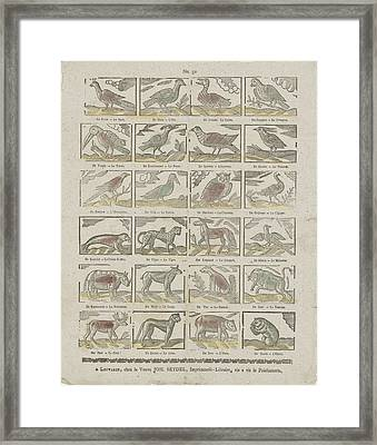 Animals, Johannes Seydel, Anonymous Framed Print by Johannes Seydel