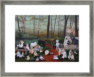 Animals Living In Harmony Framed Print