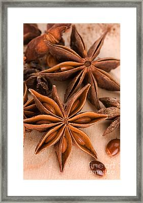 Anis Star Cell Phone Case Framed Print by Iris Richardson