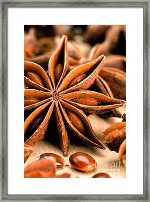 Anis Star Framed Print by Iris Richardson