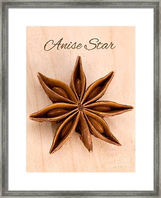 Anise Star Illicuim Verum Single Text Framed Print