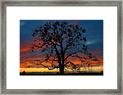 Framed Print featuring the photograph Ankeny Hill Sunset by Nick  Boren