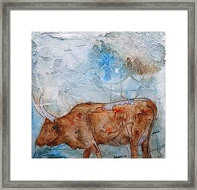 Ankole Cow Framed Print