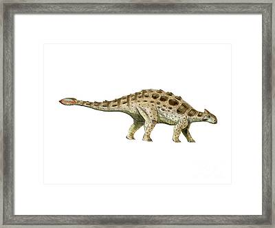 Ankylosaurus Armored Dinosaur Framed Print