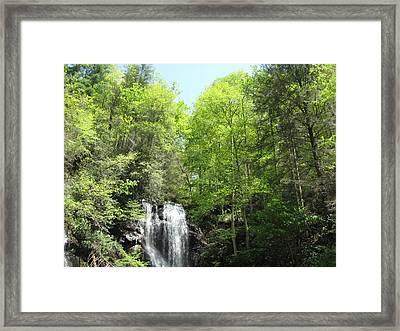 Anna Ruby Falls Helen Ga 02 Framed Print by Brian Johnson