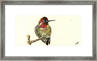 Anna S Hummingbird Framed Print by Juan  Bosco