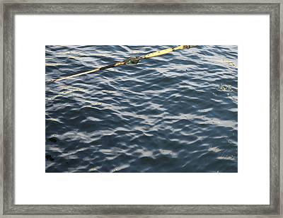 Annapolis Md - 121248 Framed Print by DC Photographer