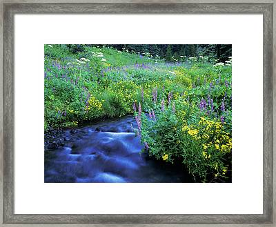 Annie Creek Flows Through Crater Lake Framed Print by Robert L. Potts