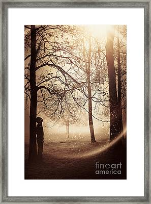 Anomaly Framed Print by Svetlana Sewell
