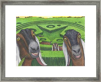 Another Busy Night Framed Print by Catherine G McElroy