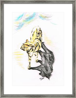 Another Cat Following Framed Print by Teresa White