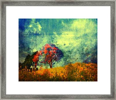 Another Chance Framed Print by Joe Misrasi