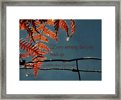 Another Chance Framed Print by Micki Findlay