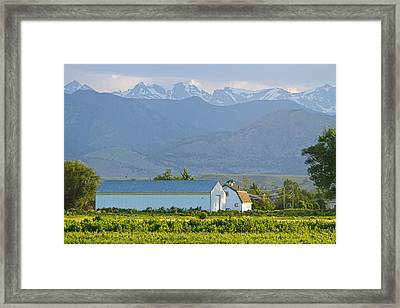 Another Colorado Country Landscape Framed Print by James BO  Insogna