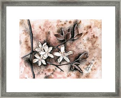 Another Plum Blossom Framed Print by Amy M Art Studio