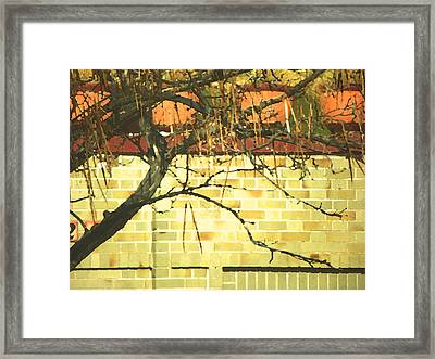 Another Small Joy 4 Framed Print by Lenore Senior