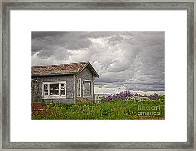 Another Spring Framed Print by Charline Xia