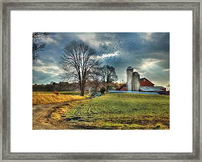 Another Sunday Morning Framed Print by Lori Deiter