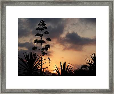 Framed Print featuring the photograph Another View by Janina  Suuronen
