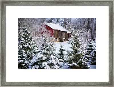 Another Wintry Barn Framed Print by Joan Carroll