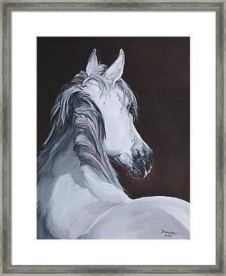 Ansata El Naseri  Framed Print by Janina  Suuronen