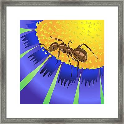 Ant And Flower Framed Print