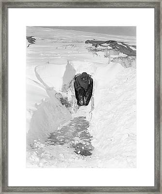 Antarctic Magnetic Research Framed Print by Scott Polar Research Institute
