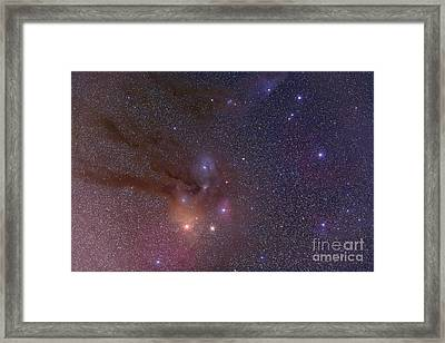 Antares And Scorpius Head Area With Rho Framed Print