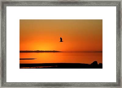 Antelope Island Sunset - 1 Framed Print by Ely Arsha