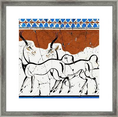 Antelope Of Akrotiri - Study No. 2 Framed Print