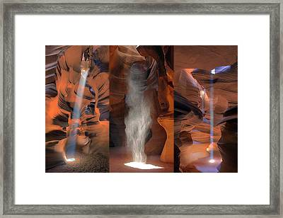 Antelope Triptych Framed Print by Patrick Jacquet