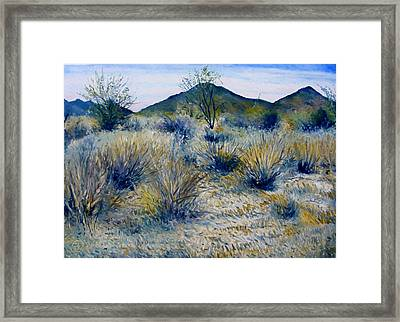 Anthem Arizona Usa Framed Print