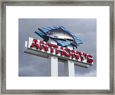 Anthonys Trout Sign Framed Print