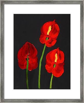 Anthurium Framed Print by Deborah Barton