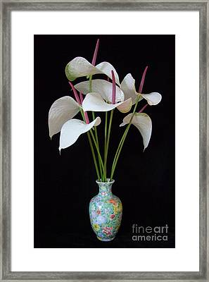 Anthurium Bouquet Framed Print by Mary Deal