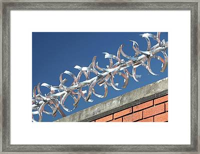 Anti-climb Barrier Framed Print by Ashley Cooper