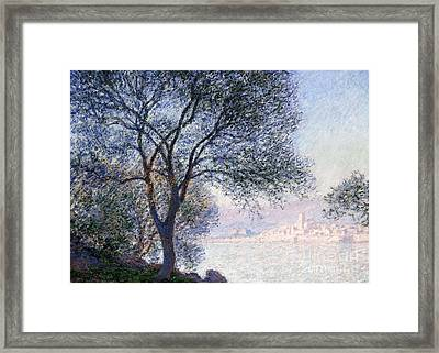 Antibes Seen From The Salis Framed Print by Claude Monet
