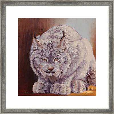 Anticipation Before The Pounce Framed Print