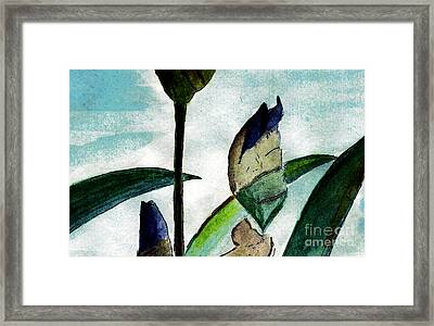 Anticipation Framed Print by Elizabeth Briggs