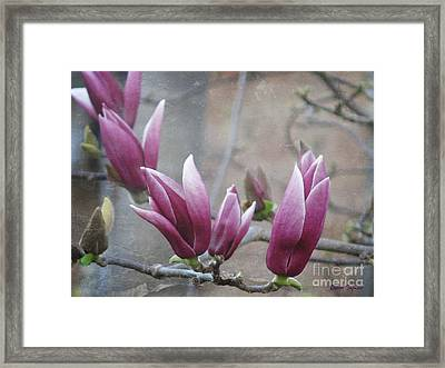 Anticipation Framed Print by Leanne Seymour