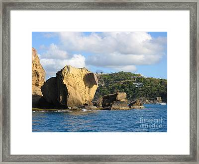 Framed Print featuring the photograph Antigua - Aliens by HEVi FineArt